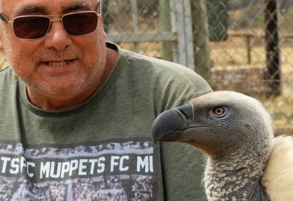 vulpro adopt a vulture